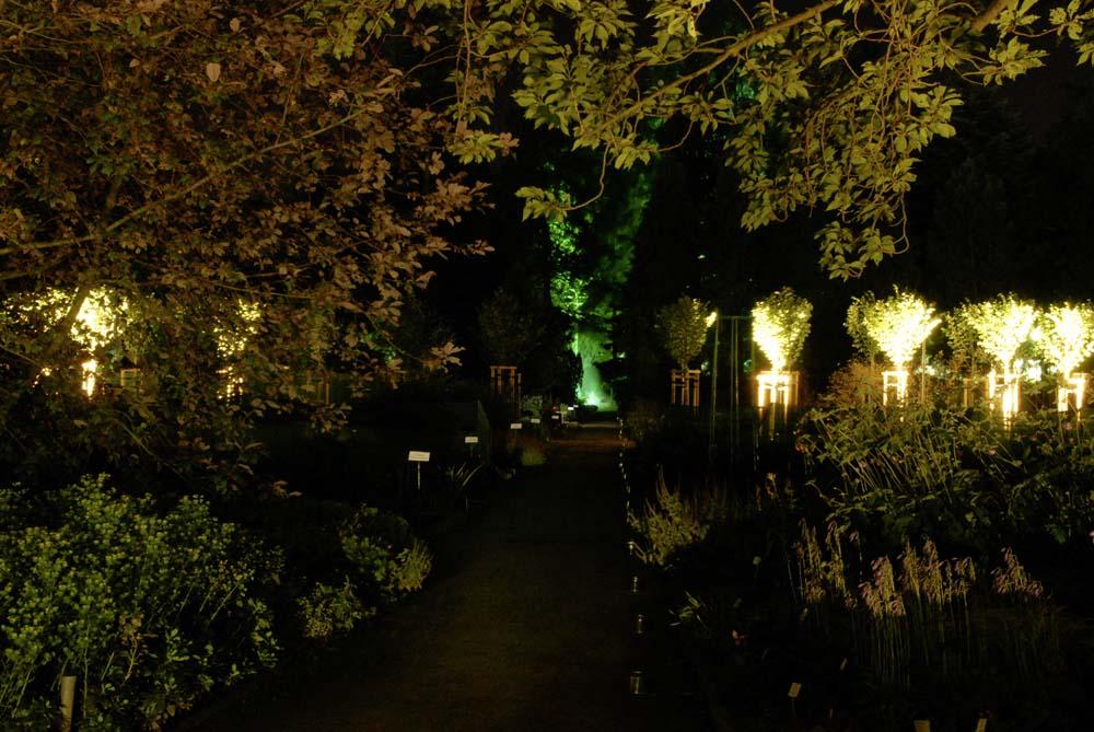 Lichtspiele im Botanischen Garten
